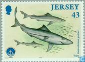 Postzegels - Jersey - Int. Jaar van de Oceaan