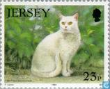 Timbres-poste - Jersey - Chats