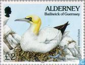 Postage Stamps - Alderney - Flora and fauna