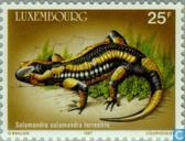 Postage Stamps - Luxembourg - European year of the environment