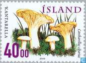 Postage Stamps - Iceland - Edible mushroom