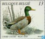 Postage Stamps - Belgium [BEL] - Ducks
