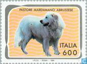 Postage Stamps - Italy [ITA] - Dogs