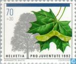 Postage Stamps - Switzerland [CHE] - Trees