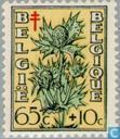 Briefmarken - Belgien [BEL] - Blumen