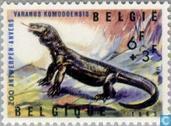 Postage Stamps - Belgium [BEL] - Reptiles