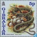 Briefmarken - Gibraltar - Chinese New Year Jahr der Schlange