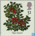 Briefmarken - Großbritannien [GBR] - Roses