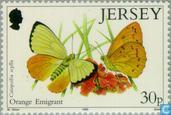 Briefmarken - Jersey - Schmetterlinge