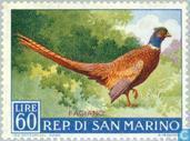 Timbres-poste - Saint-Marin - Oiseaux
