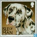 Postage Stamps - Man - Dogs