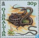 Postzegels - Gibraltar - Chinees Nieuwjaar- Jaar van de Slang
