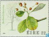 Postage Stamps - Ireland - Flora