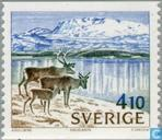 Postage Stamps - Sweden [SWE] - Reindeers at lake Padjelanta