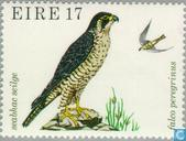 Briefmarken - Irland - Wildvögel