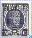 Timbres-poste - Belgique [BEL] - Roi Albert I (type Houyoux), avec surcharge