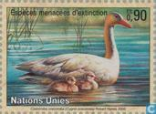 Postage Stamps - United Nations - Geneva - Endangered Animals