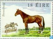 Postage Stamps - Ireland - Horse