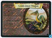 Trading cards - Harry Potter 4) Adventures at Hogwarts - Welsh Green Dragon