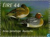 Postzegels - Ierland - Eenden