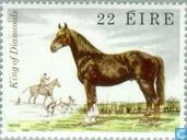 Postzegels - Ierland - Paarden