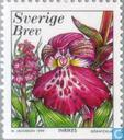 Timbres-poste - Suède [SWE] - Orchidées