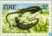 Postage Stamps - Ireland - Reptiles and amphibians