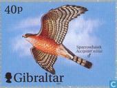 Postzegels - Gibraltar - Vliegtuigen en vogels