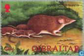 Postzegels - Gibraltar - Dieren