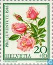 Timbres-poste - Suisse [CHE] - Fleurs-roses