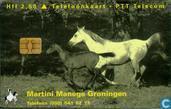 Martini Manege Groningen