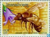 Association des apiculteurs 100 années