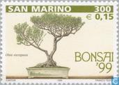 Postzegels - San Marino - Bonsai