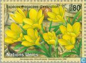 Postage Stamps - United Nations - Geneva - Endangered Plants