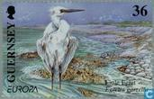 Postage Stamps - Guernsey - Europe – Water, treasure of nature