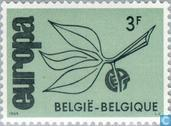 Postage Stamps - Belgium [BEL] - Europe – Twig and Fruit