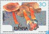 Postage Stamps - Spain [ESP] - Mushrooms