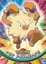 Cartes à collectionner - Pokémon TV Animation Edition Series 1 - Primeape