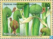 Timbres-poste - Nations unies - Genève - Plantes menacées