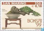 Postage Stamps - San Marino - Bonsai