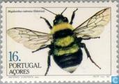 Timbres-poste - Açores - Insectes