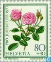 Timbres-poste - Suisse [CHE] - Roses