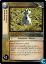 Shadowfax, Unequaled Steed