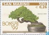Briefmarken - San Marino - Bonsai