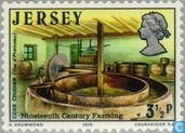Timbres-poste - Jersey - Agricole