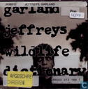 Disques vinyl et CD - Jeffreys, Garland - Wildlife dictionary