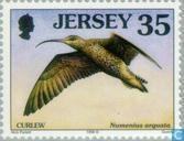 Briefmarken - Jersey - Vögel