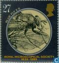 Postage Stamps - Great Britain [GBR] - Royal Microscope Society 1839-1989