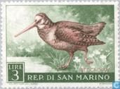 Postage Stamps - San Marino - Birds