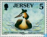 Postzegels - Jersey - Vogels